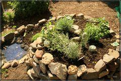 Kräuterspirale in unserem Garten