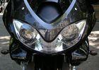 Kraftstoffverbrauchendes Insekt