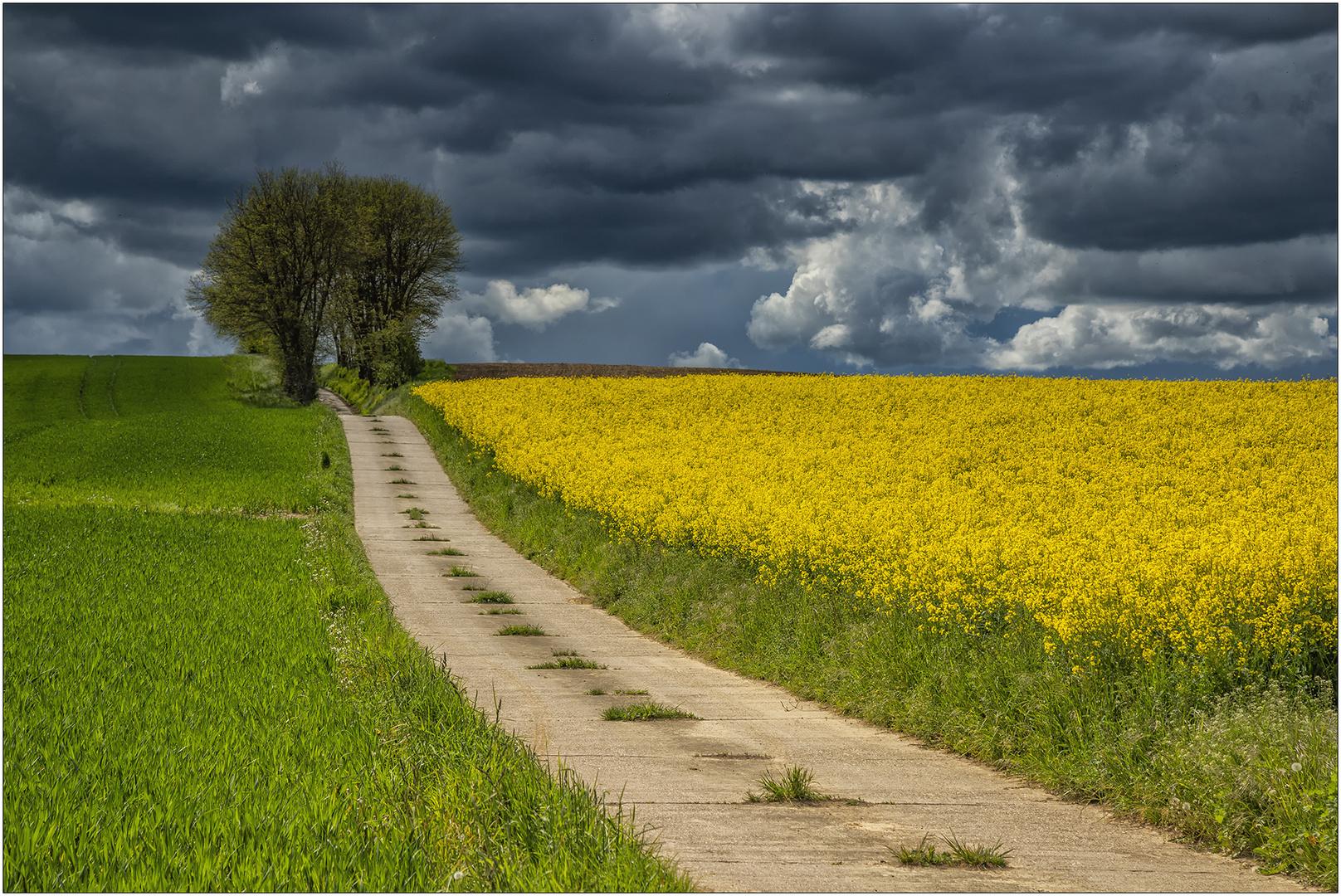 Kraichgau Weg