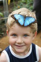 Krefelder Zoo - Manuel mit Schmetterling