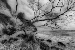 Kreide und Meer...