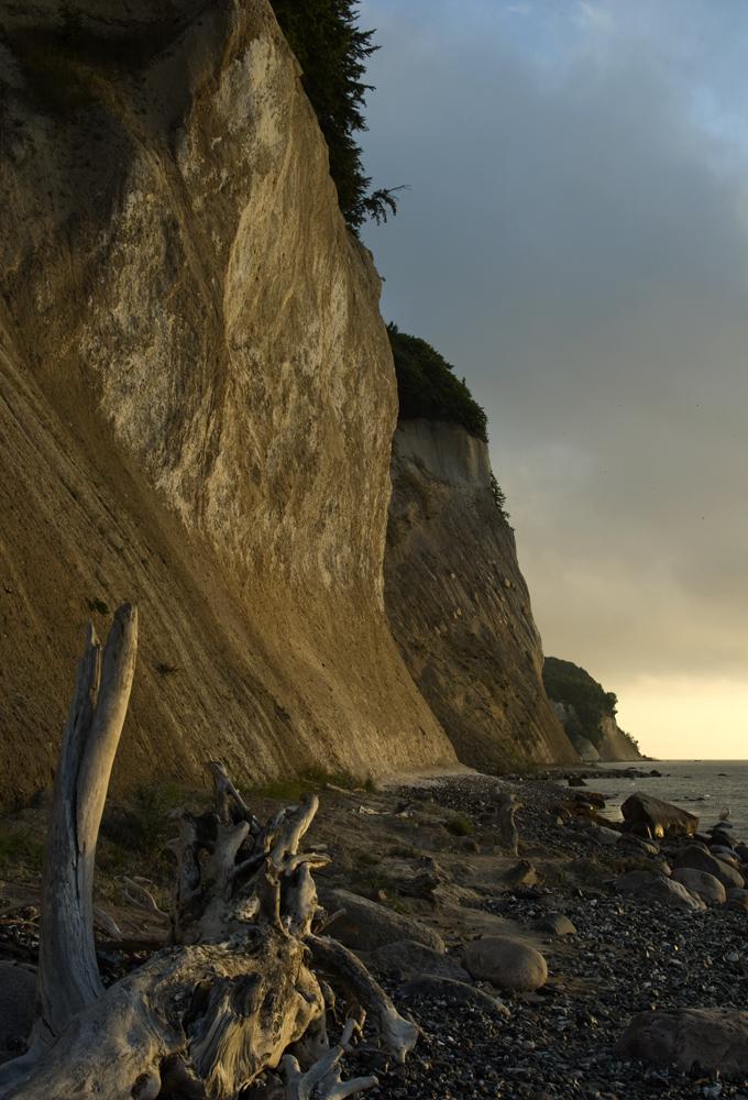 Kreideküste bei Sasnitz