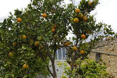 Kreta-2012_11_26-11_09_40