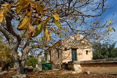 Kreta-2012_11_28-11_24_28