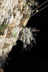 Kreta-2012_12_04-12_25_09