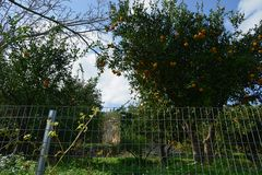 Kreta-2013_12_23-11_55_40
