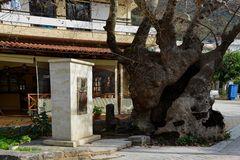 Kreta-2013_12_23-12_02_16