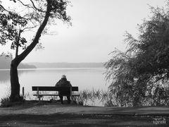 Krickenbecker Seen - Natur genießen