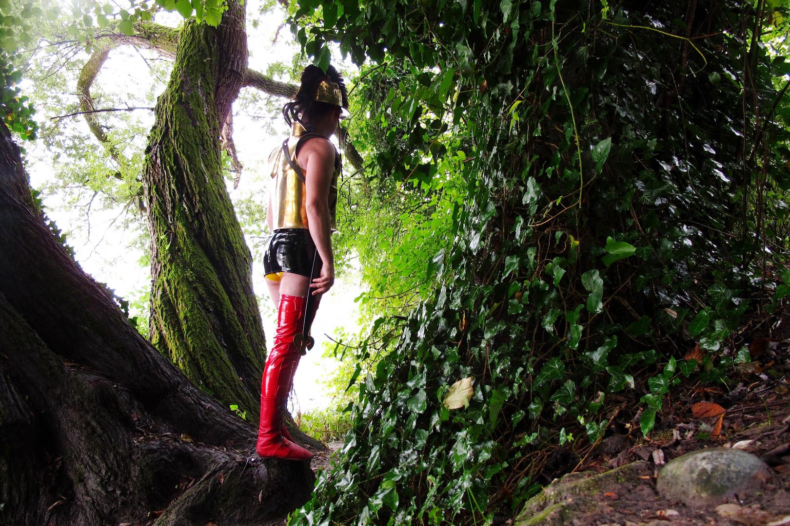 Krieger im Wald bei Wasserburg am Inn