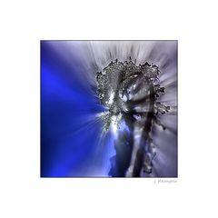 - kristalline Explosion -