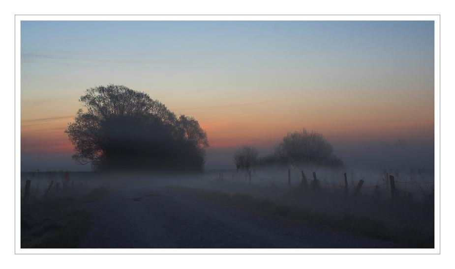 Krummesser Moor: Bevor die Sonne aufgeht