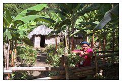 Kubanischer Kakao-Bauer