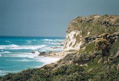 Küste bei Enriquillo