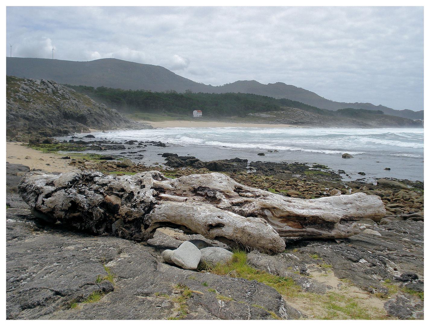 Küstenlandschaft in Galizien