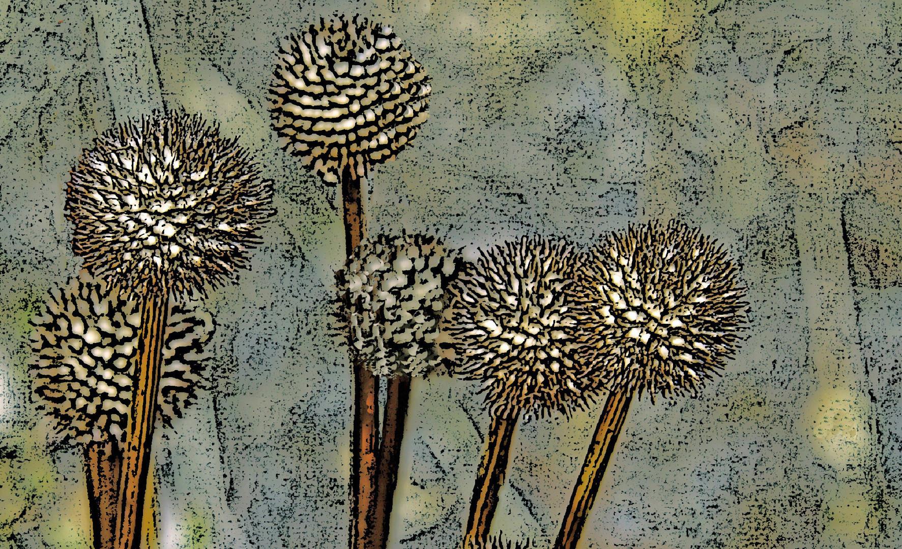 Kugelblumen abstrahiert