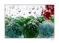 Kugelwassergeblubber [2]