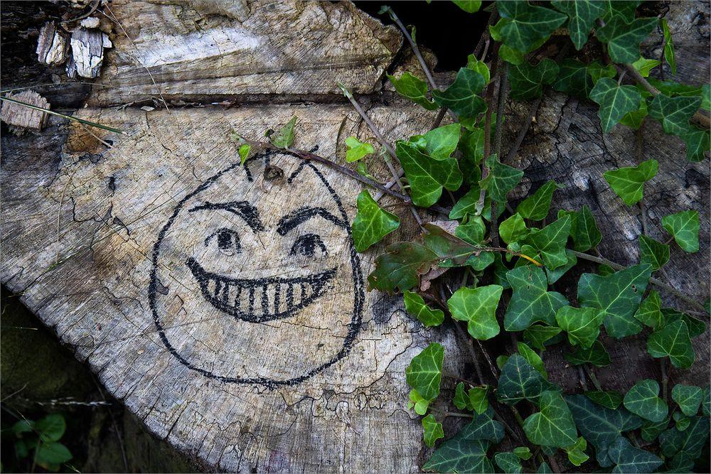 Kunst am Baum
