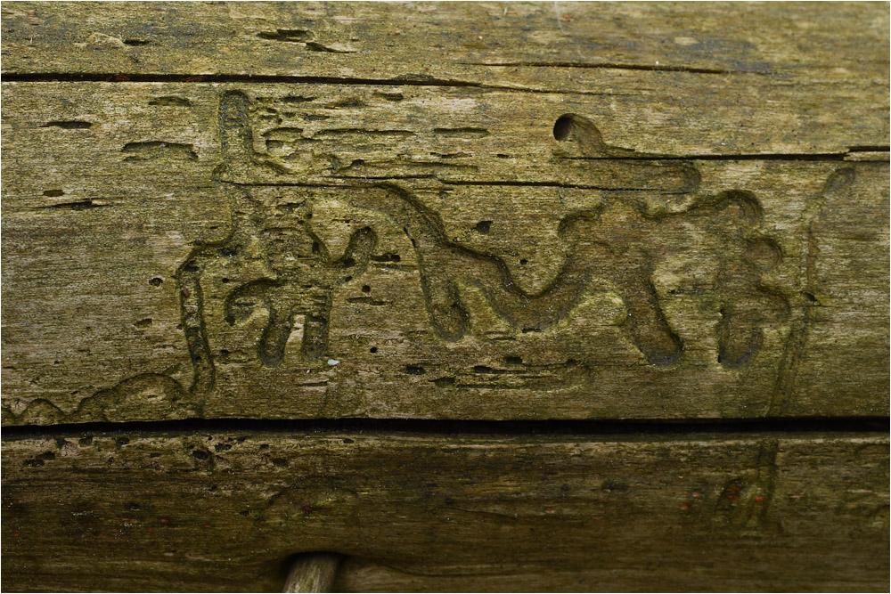 Kunst auf Totholz