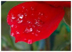 Kunst des Regens