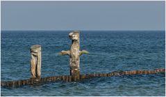 Kunst im Wasser