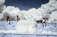 Kunst in Infrarot - A&E Monkey