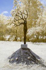 Kunst in Infrarot - Daphne in de wind