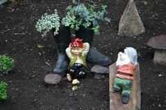 """""""KUNST"""" in Nachbars Garten"""