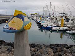 Kunst zwischen Meer und Land Zackenbarsch im Hafen