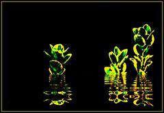 Kunstblume