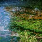 Kunstwerke der Natur  - Farbenspiel