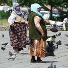 Kurdas entre palomas