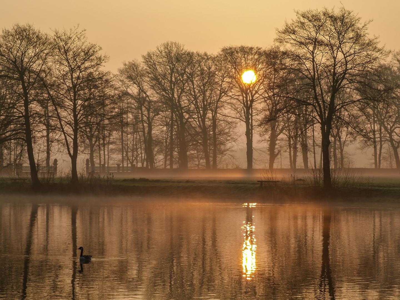 Kurz nach Sonnenaufgang am See bei Melle