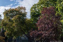 Kurz vor dem Herbst
