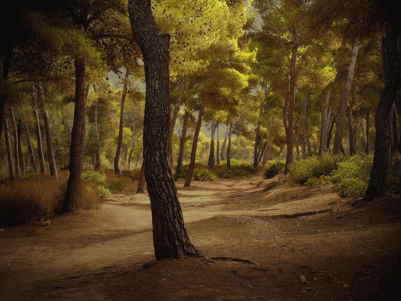 Kurz vor dem Unwetter auf Mallorca