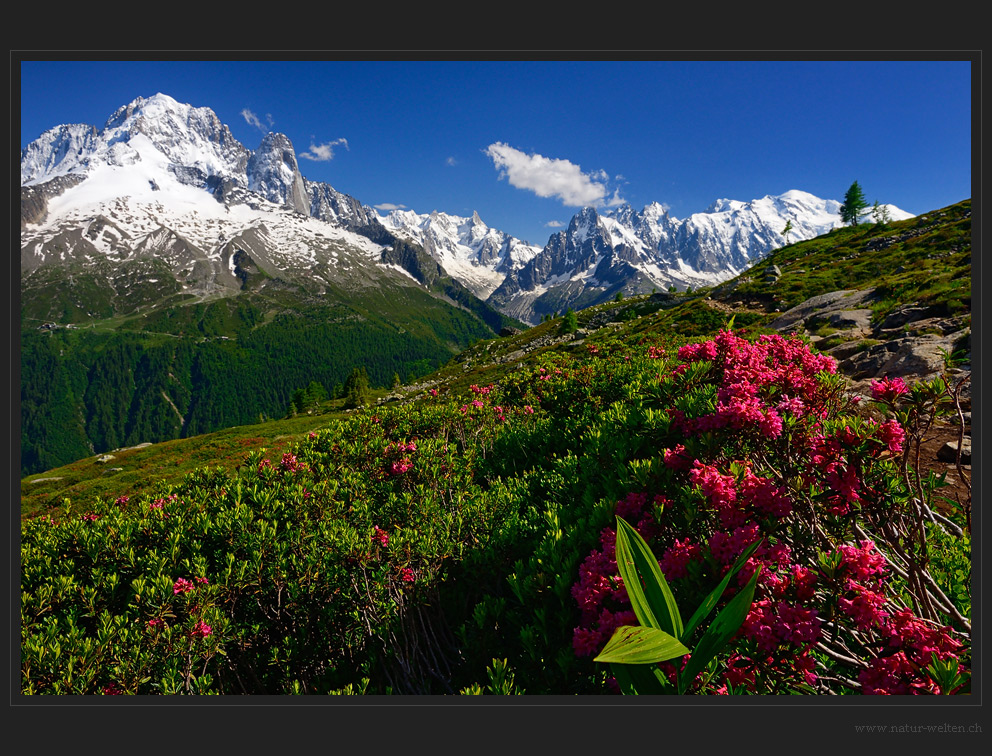 Kurzabstecher beim Mt. Blanc