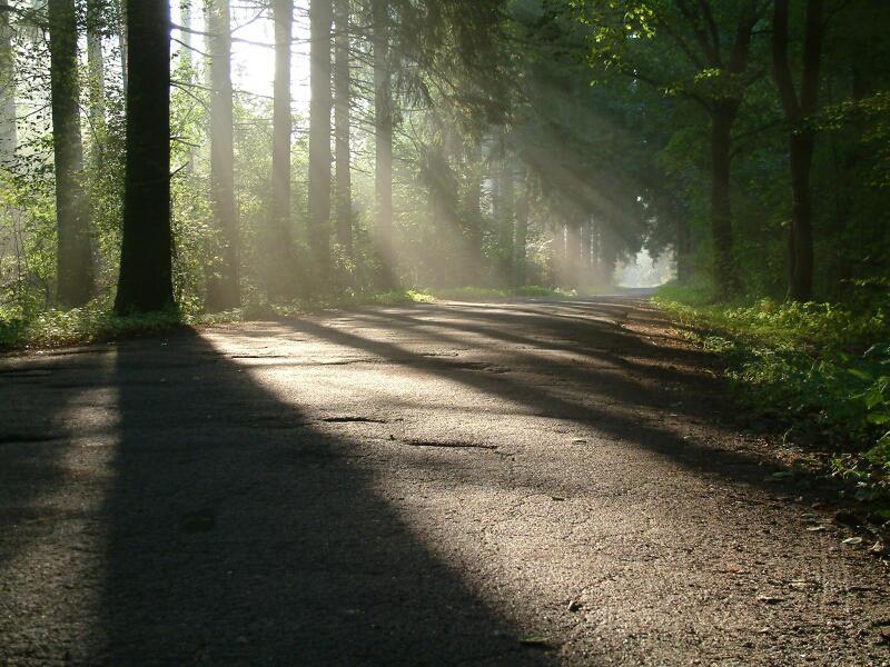kurze Tage - lange Schatten