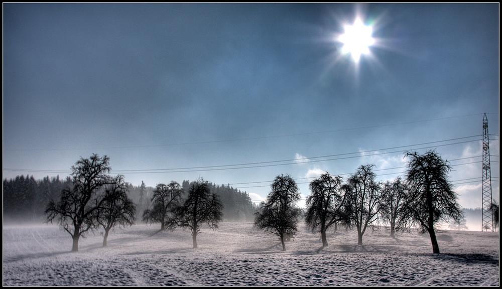 Kurzer, schöner Wintertag!