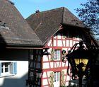 Kurzvisite in Bremgarten