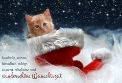 Kuschelige Adventszeit