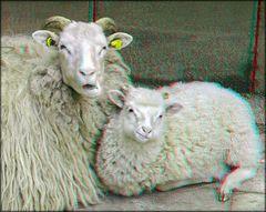 Kuschelstunde bei Familie Schiefmaul 1 (3D)