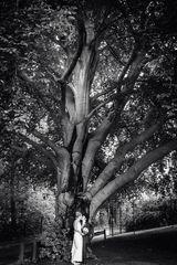 Kuss unter'm Baum