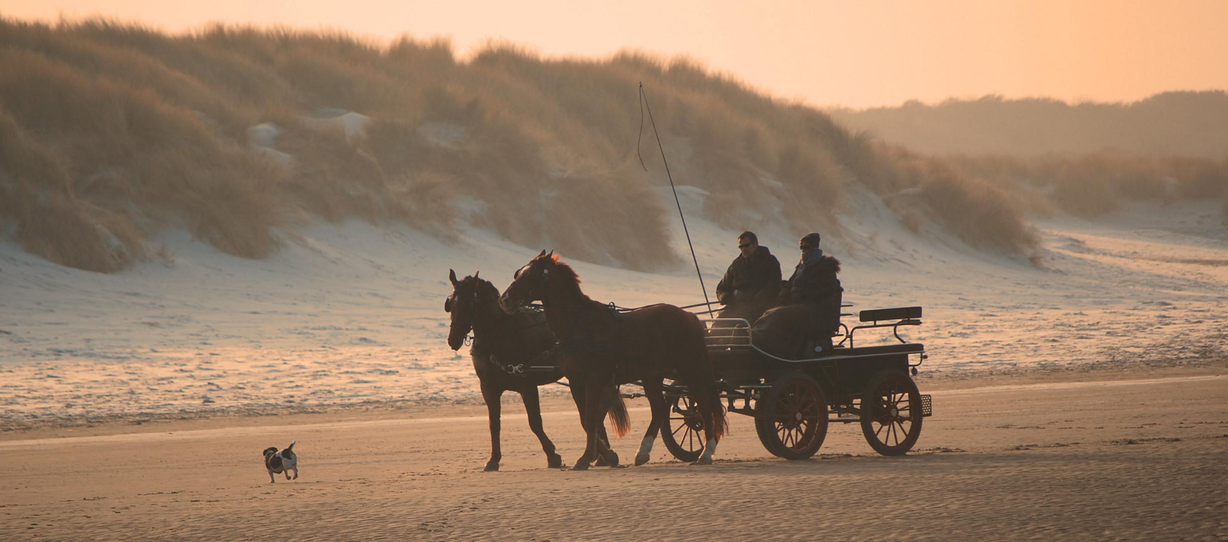 Kutsche am Strand