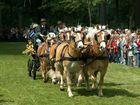 Kutschenwallfahrt Telgte 2007