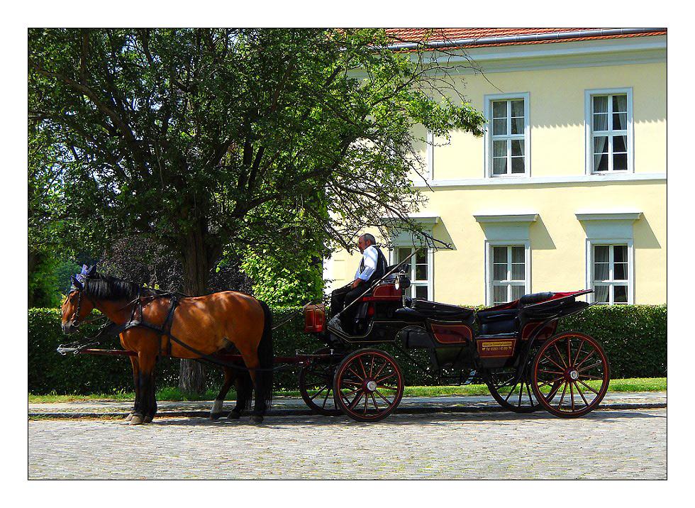 Kutschfahrt in Rheinsberg