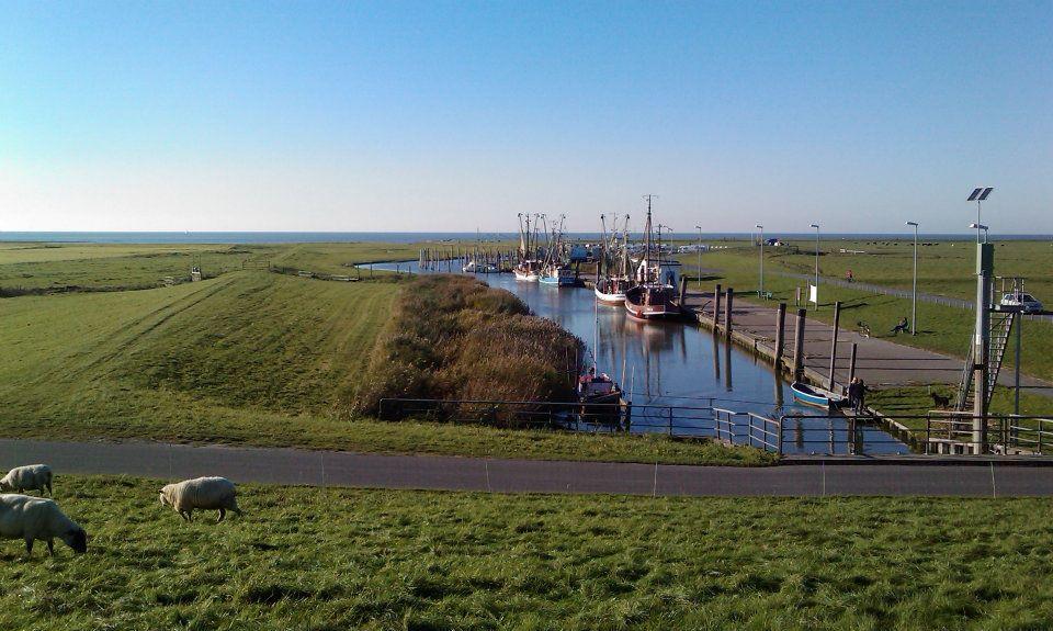 Kutterhaven