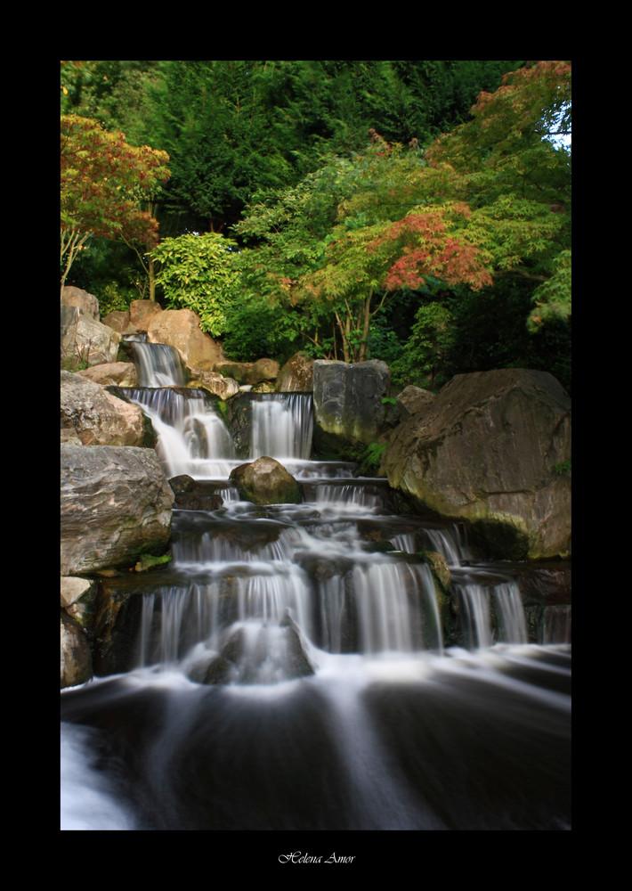Kyoto garden 4