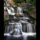 Kyoto garden 5