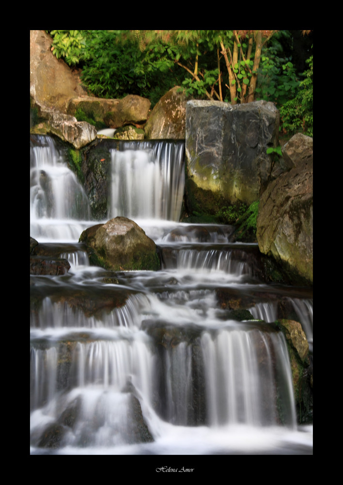 Kyoto garden 6