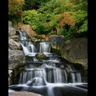 Kyoto garden 7