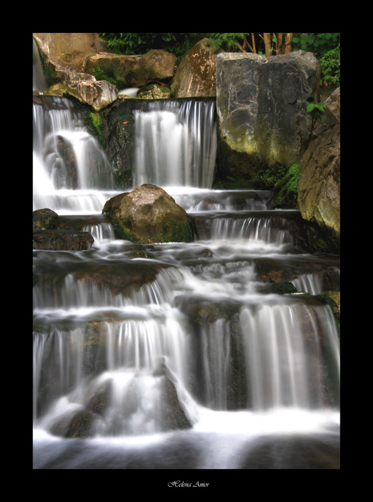 Kyoto garden 9